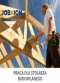 Experienced Construction Carpenter needed! I New Buildings & Renovations I Holland